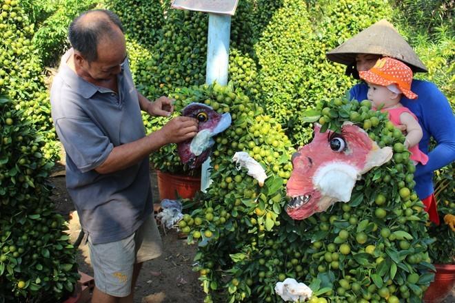 Cây cảnh khỉ Tề thiên 'đại náo' chợ Tết