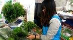 Rộ mốt săn rau rừng làm quà Tết ở Hà Nội