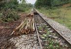 Hoang tàn tuyến đường sắt độc nhất xứ Nghệ