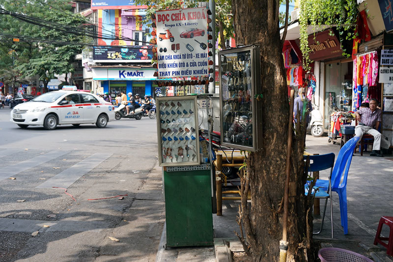 Bán hàng, kinh doanh, cây cối, bày hàng, Hà Nội
