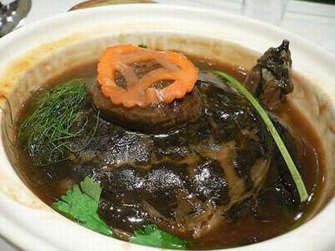 thịt rùa, súp thịt rùa