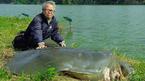 Hồ Gươm sẽ có cụ rùa thay thế?