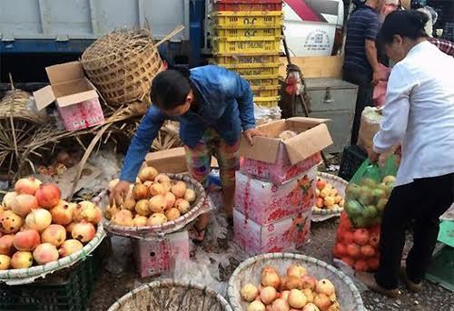 Hoa quả, hoa quả Trung Quốc, buôn bán, thu lãi, xây nhà lầu, ngón tay ố vàng, móng tay biến dạng, tiết lộ sốc, hoa-quả, hoa-quả-trung-quốc, buôn-bán, thu-lãi, xây-nhà-lầu, ngón-tay-ố-vàng, móng-tay-biến-dạng, tiết-lộ-sốc