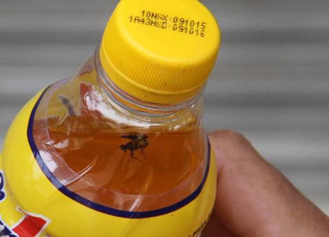 Lại phát hiện chai Number 1 có ruồi