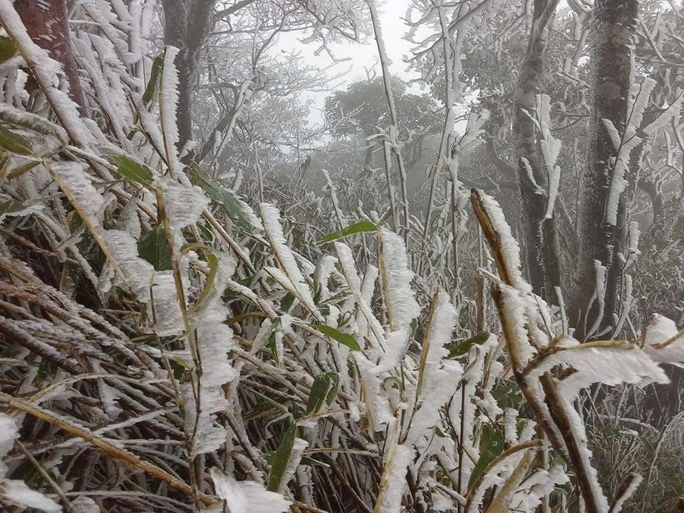 Hình ảnh băng tuyết phủ trắng vùng núi phía Bắc