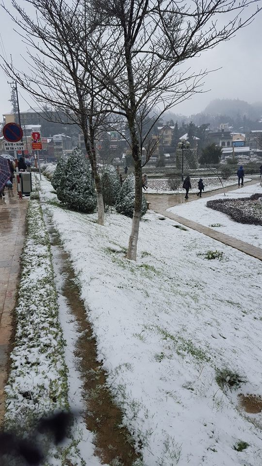 Tuyết phủ trắng Sa Pa, ảnh chụp lúc 14h ngày 24/1. (Ảnh: P. Phương)