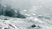 Cảnh tuyết Sa Pa rơi dày đặc như châu Âu