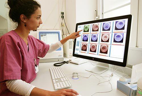 vô sinh, hiếm muộn, mang thai hộ, thụ tinh trong ống nghiệm, IVF