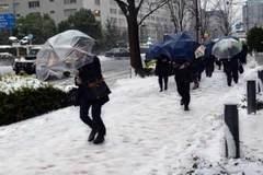 Xem Đông Á đóng băng tê cóng