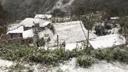Tuyết ngừng rơi ở Sa Pa