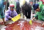 Cúng ông Táo: Bán 3 tấn cá chép mỗi ngày