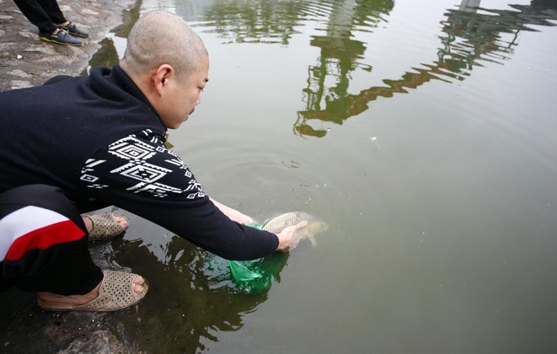 thả cá chép, 23 tháng Chạp, ông Công ông Táo