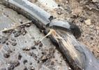 Hà Nội: Giật mình ruột nắp hố ga làm từ... bao tải dứa