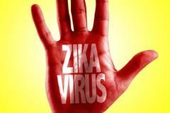 Hiểm họa virus Zika đang đe dọa toàn cầu