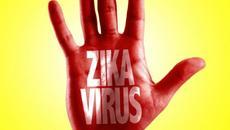 7 bí ẩn chưa thể lý giải về virus gây teo não Zika