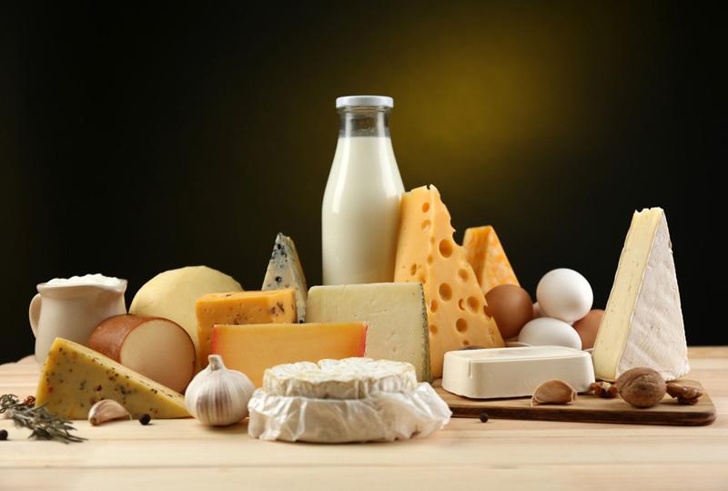 Sữa lợi hay hại: Phụ thuộc con bò