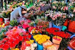 7 khu chợ Tết mua sắm ở Sài Gòn