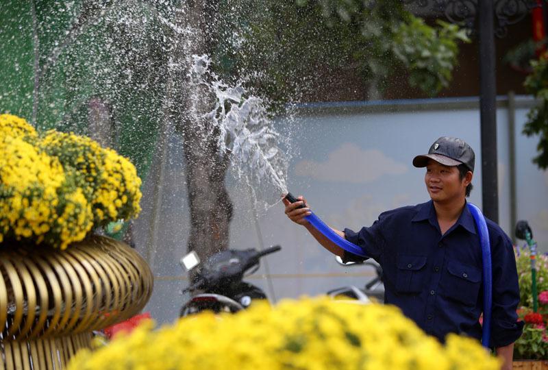 Đường hoa Nguyễn Huệ đẹp lung linh trước giờ khai mạc