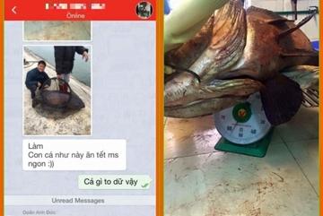 Thanh niên khoe cá 'siêu khủng' đón Tết gây xôn xao