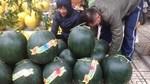 Dưa hấu 15kg/quả đổ bộ Hà Nội
