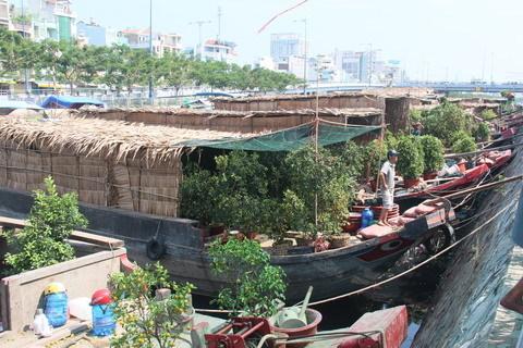 Ế ẩm chợ hoa trên bến dưới thuyền