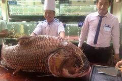 Đại gia Việt dốc tiền mua cá khủng về nhậu