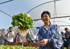 Cựu Thủ tướng Thái xinh đẹp họp báo khoe rau tự trồng