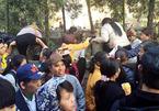 Khai hội chùa Hương, biển người trèo tường tìm lối đi
