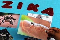 Muỗi biến đổi chống Zika sắp được thả thử nghiệm ở Việt Nam