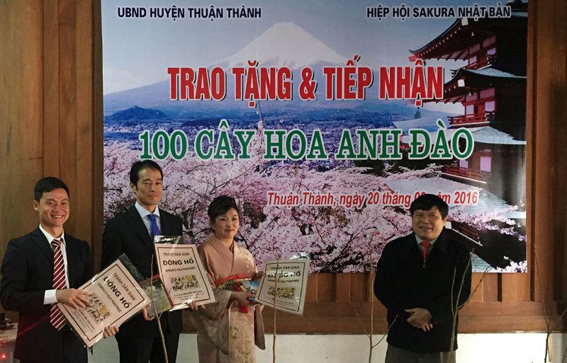 Nhật Bản tặng 100 cây hoa anh đào cho Bắc Ninh