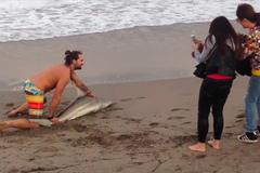 Clip hot: Lôi cá mập lên bờ ép chụp ảnh 'tự sướng'