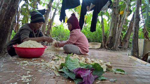 viện trợ, Việt Nam, kinh tế, phát triển, thị trường
