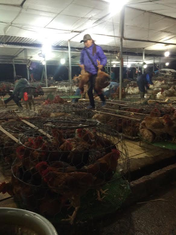 chợ cá, chợ đầu mối tự phát, Hà Nội, chợ Hà Nội, tiểu thương, chợ cá Lê Văn Lương