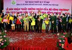 Liên kết Việt vươn vòi tới đất Cảng: Hoa hồng và trái đắng