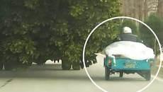 Xe chở cây hất văng xe ba bánh xuống sông