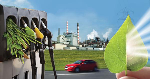 phân người, thay xăng, nhiên liệu, công nghệ, ô tô