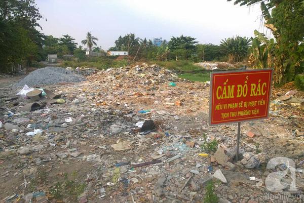 Công viên trăm tỉ ở trung tâm Sài Gòn thành nơi... trồng rau, nuôi chó