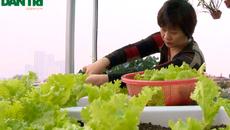 Mãn nhãn vườn rau 40 triệu đồng trên sân thượng nhà 6 tầng