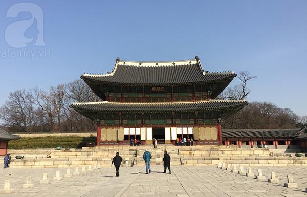 Kinh nghiệm du lịch Hàn Quốc chỉ hết 11 triệu