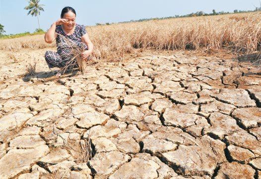 Trung Quốc, điều tiết, nguồn nước, sông Mê Kông, Đồng bằng sông Cửu Long, Việt Nam