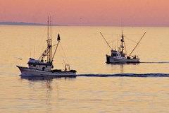 Argentina đánh chìm tàu TQ đánh cá bất hợp pháp