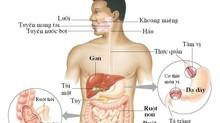 Ung thư đường tiêu hóa: Nguy hiểm nhất trong các loại ung thư
