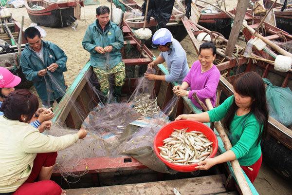 FLC, ngư dân Sầm Sơn, bến thuyền