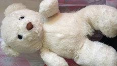Mất ăn, khó ngủ với gấu bông Trung Quốc gắn chíp lạ