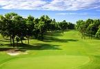 Chính phủ muốn dành gần 11.000 ha đất làm 96 sân golf