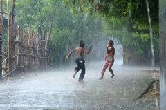 'Mưa vàng, mưa bạc' bao phủ miền Bắc