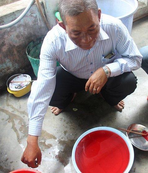 ruốc nhuộm màu đỏ, Phú Yên, thực phẩm tẩm hóa chất, vệ sinh an toàn thực phẩm