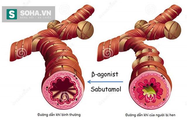 salbutamol, chất tạo nạc