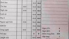 Được cho toàn điểm 10 vì thi học sinh giỏi
