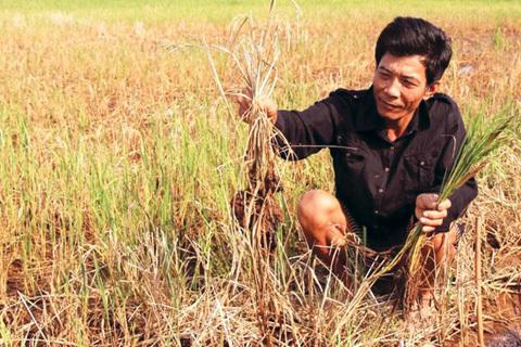 Một giải pháp nước cho Đồng bằng sông Cửu Long